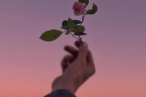 夫妻存在的弊端,背后原因常被忽略